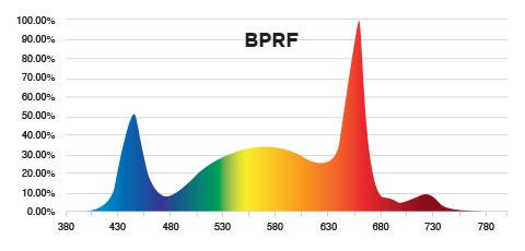 PhotonMax Spotlight - BPRF Spectrum