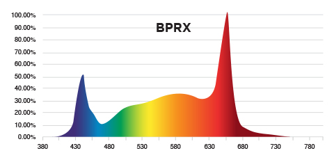PhotonMax Spotlight - BPRX Spectrum