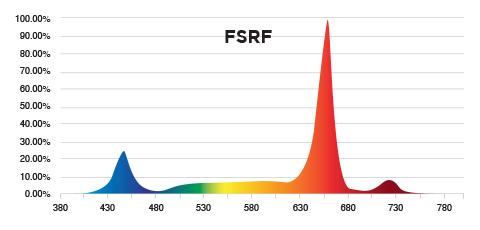 PhotonMax Spotlight - FSRF Spectrum